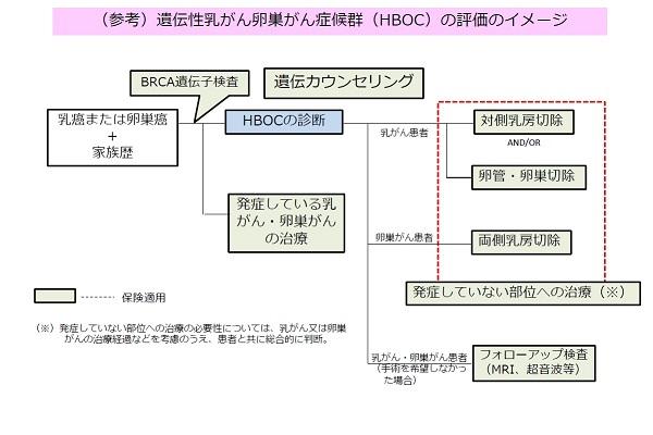 遺伝性乳がん卵巣がん症候群(HBOC)の評価のイメージ